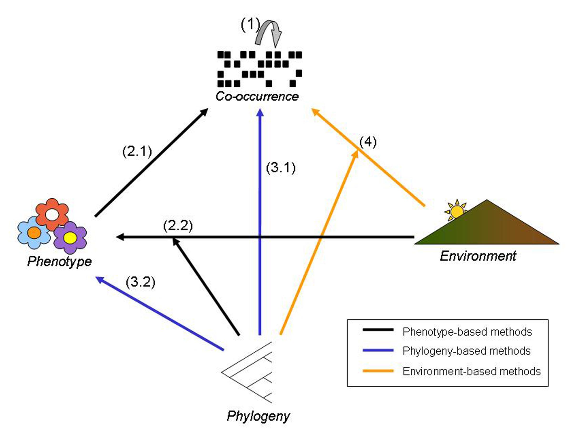 Pausas-Verdu-BioScience